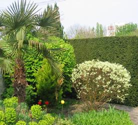 Espaces entretien jardin cergy foliavert for Entretien jardin 95